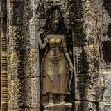 Detalhe dos carvings de pedra no wat do angkor, cambodia Imagens de Stock