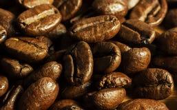 Detalhe dos feijões de café Foto de Stock Royalty Free