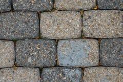 Detalhe dos tijolos à terra com as folhas secadas nas quebras Imagem de Stock