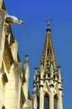 Detalhe gótico da arquitetura da catedral Imagens de Stock
