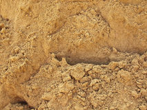 Detalhe interessante da duna de areia Imagens de Stock