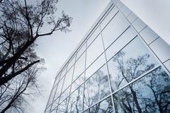 Detalhe moderno da fachada com reflexão da árvore Fotografia de Stock Royalty Free