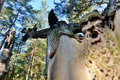 detalhe Monte das bruxas Juodkranté lithuania Imagem de Stock