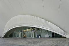 Detalhe Museu de les Ciencies Principe Felipe. Imagem de Stock