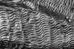 Detalhe ondulado do metal Fotografia de Stock Royalty Free