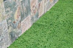 Detalhe surreal do gramado Imagens de Stock Royalty Free