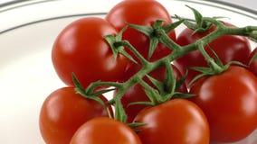 Detalhe vegetal do tomate dos alimentos frescos video estoque