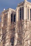Detalhes arquitetónicos de catedral Notre Dame Imagem de Stock
