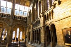 Detalhes da arquitetura no salão principal retrato do ` s do museu e do Charles Darwin da história natural no primeiro plano foto de stock royalty free