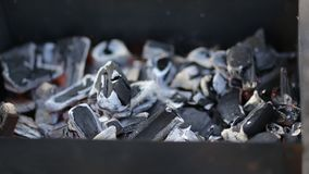 Detalhes de carvão vegetal para o assado, no espeto no piquenique vídeos de arquivo