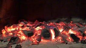 Detalhes de carvão vegetal para o assado no piquenique video estoque