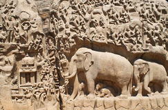 Detalhes de descida do Ganges em Mahabalipuram, Índia imagens de stock royalty free