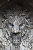 Detalhes de fonte do leão Imagens de Stock