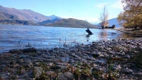 Detalhes de lago Wanaka, Nova Zelândia Fotografia de Stock
