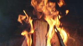 Detalhes de um fogo de madeira video estoque