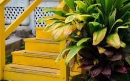 Detalhes de uma casa colorida na vila de Kapaau Foto de Stock Royalty Free