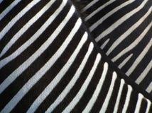 Detalhes de zebra imagem de stock royalty free