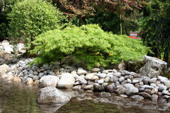 Detalhes do jardim da água fotografia de stock