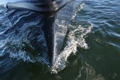 Detalhes do veleiro Foto de Stock Royalty Free