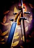 Detalhes do violino Fotos de Stock