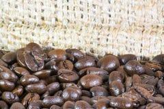 Detalhes dos feijões de café Fotografia de Stock