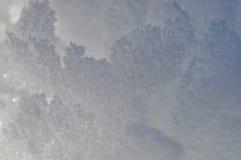 Detalhes dos flocos de neve Imagens de Stock