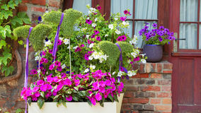 Detalhes e elementos do interior da rua, muitas flores Fotos de Stock Royalty Free