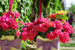 Detalhes e elementos do interior da rua, muitas flores Imagem de Stock
