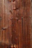 Detalhes naturais de madeira secada sol Fotografia de Stock Royalty Free