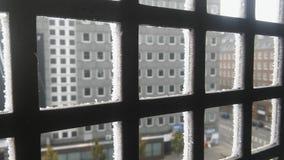detalhes nevado fotografia de stock