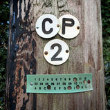 Detalj av att märka på telegrafpol i sydliga Förenade kungariket Royaltyfri Bild