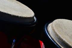 Detalj av bongovalsar som är macho på rätt och hembra på vänster mörk bakgrund Arkivbilder