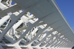 Detalj av byggnaden som inhyser staden av vetenskap i Valencia arkivfoto