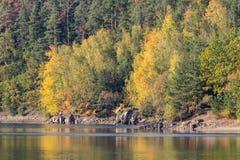 Detalj av coloful träd för höst med vatten, tjeckiskt landskap arkivfoton
