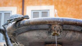 Detalj av den berömda Fontana dellen Tartarughe sköldpaddastilsatsen Arkivbild