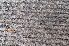 Detalj av den gamla medeltida trottoar-/kvarterstenvägen/bruten stentrottoar/tappningbakgrund Fotografering för Bildbyråer