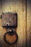 Detalj av den gamla wood porten royaltyfria foton