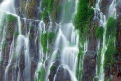 Detalj av den Iguazu vattenfallet Arkivfoton