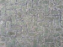 Detalj av det konkreta golvet Arkivfoton