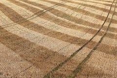 Detalj av det torra skördade åkerbruka fältet arkivfoton