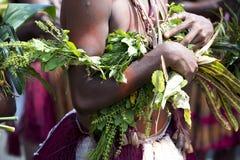 Detalj av dräktdansaren på den Sepik floden, Papua Nya Guinea Royaltyfri Foto