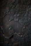 Detalj av en bränd ned vägg Royaltyfri Fotografi