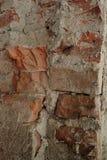 Detalj av en gammal tegelstenvägg royaltyfria bilder