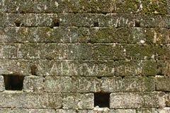 Detalj av en stenvägg royaltyfri foto