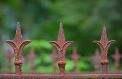 Detalj av ett gammalt rostigt staket med tre fransk lilja Fotografering för Bildbyråer