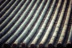 Detalj av ett japanskt tak Royaltyfri Foto