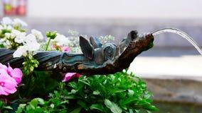 Detalj av ett vattenklapp med djurt motiv på en springbrunn för sser för springbrunnBarfà ¼ på Franziskanerplatz i den historiska royaltyfri bild