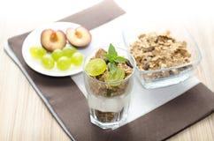 Detalj av exponeringsglas med yoghurten, sädesslag, frukt och mintkaramellen, plommoner Royaltyfria Foton