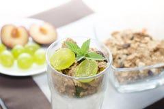 Detalj av exponeringsglas med yoghurten, sädesslag, frukt och mintkaramellen, plommoner Royaltyfri Fotografi
