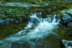 Detalj av floden Bijela fotografering för bildbyråer